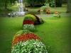 plantes01